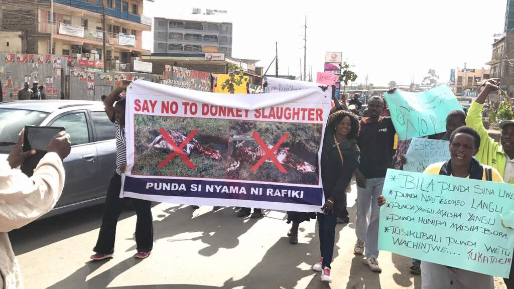Say no to donkey slaughter, Kenya