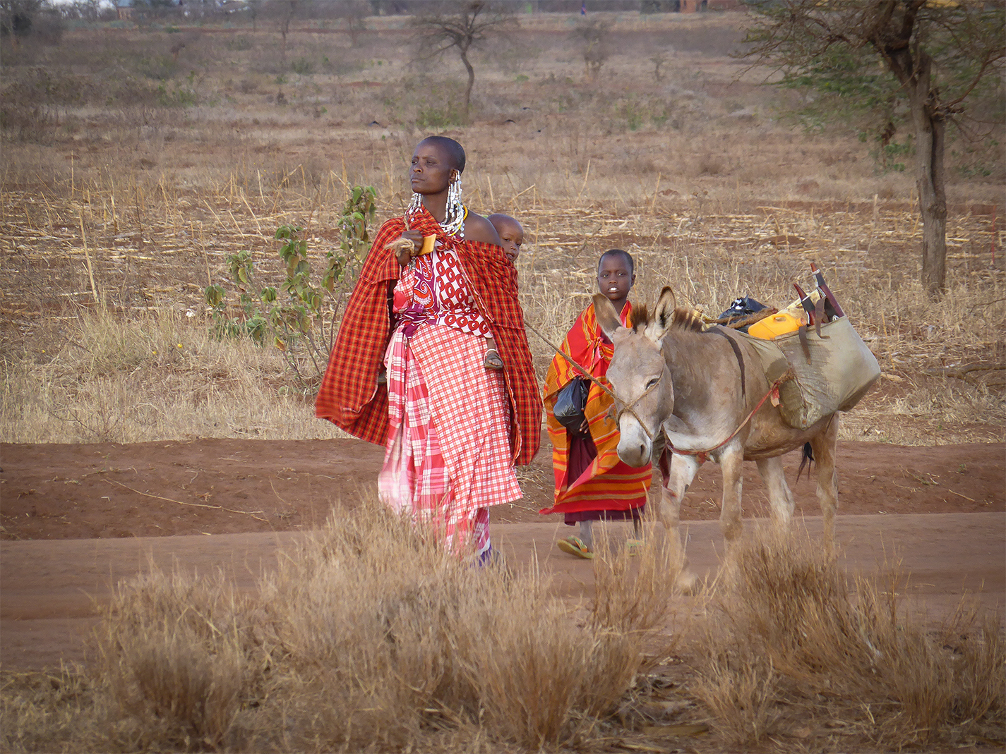 Masaai woman accompanied by her donkey