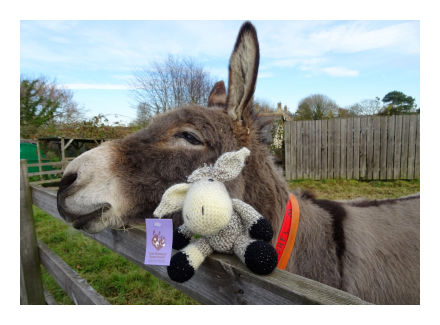 Woolley with donkey