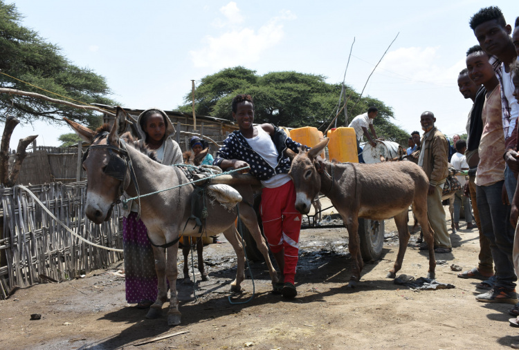 Margartu and Romia with donkey cart