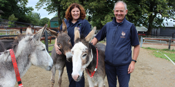 The Donkey Sanctuary Ireland's welfare team surrounded by three donkeys