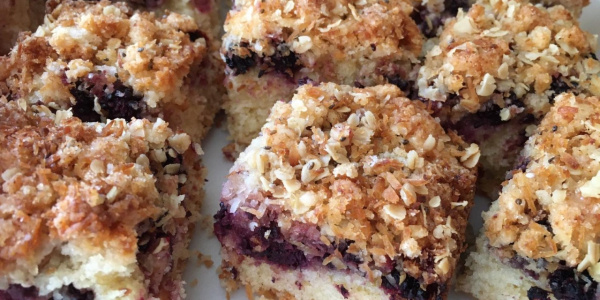 Blackberry and coconut squares