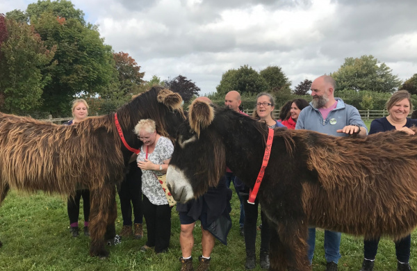 Group meets the Poitous at our All Things Donkey experience day