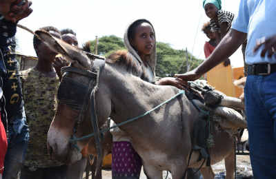 Margartu with donkey, Ethiopia