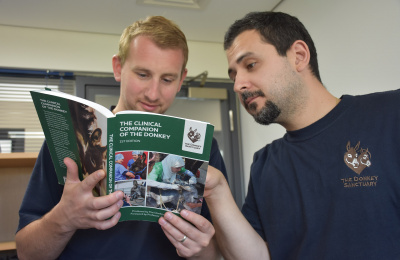 Vets reading Clinical Companion