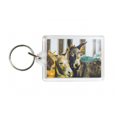Donkey Photo Keyring - Alfie and Benjy