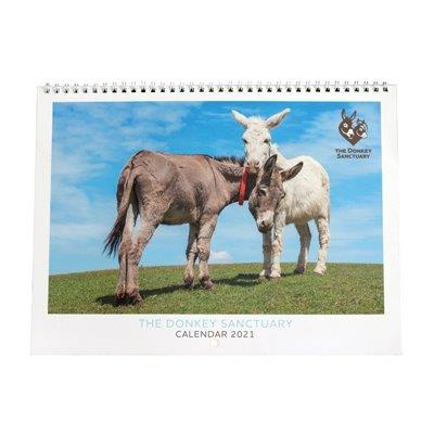 2021 Donkey Sanctuary Wall Calendar