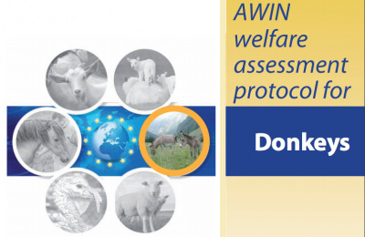AWIN welfare assessment protocol for donkeys